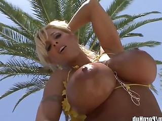 Angel Ass Babe Beauty Big Tits Blonde Boobs Bus